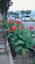 Susakaa101001_072301