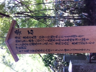 香取神宮にカンナを咲かせる? ①